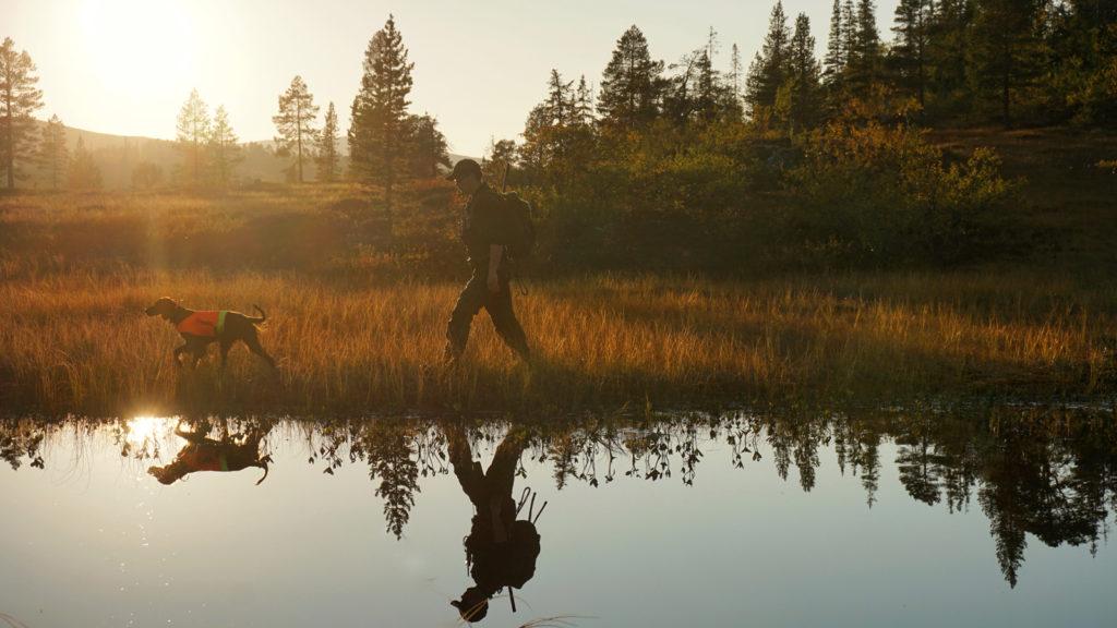 Høst og tid for jakt i Trøndelag