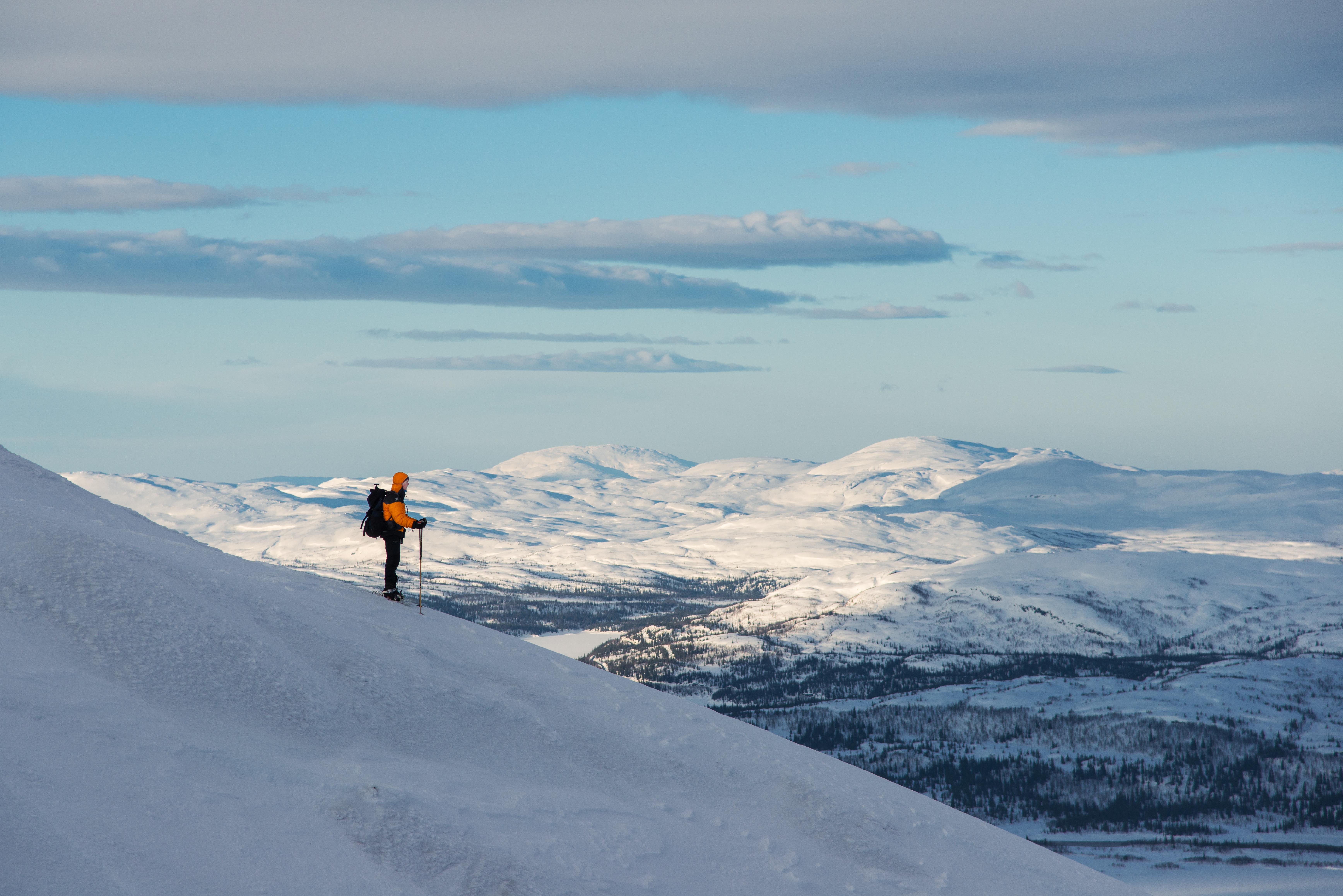 Utsikt til Dærga en fjelltopp i Børgefjell nasjonalpark. Foto: Bernartwood / trondelag.com