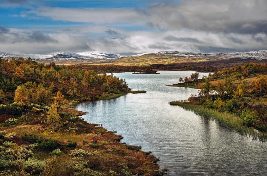 Ystesosen i nærheten av Stugudalen. Foto: Bernartwood / trondelag.com