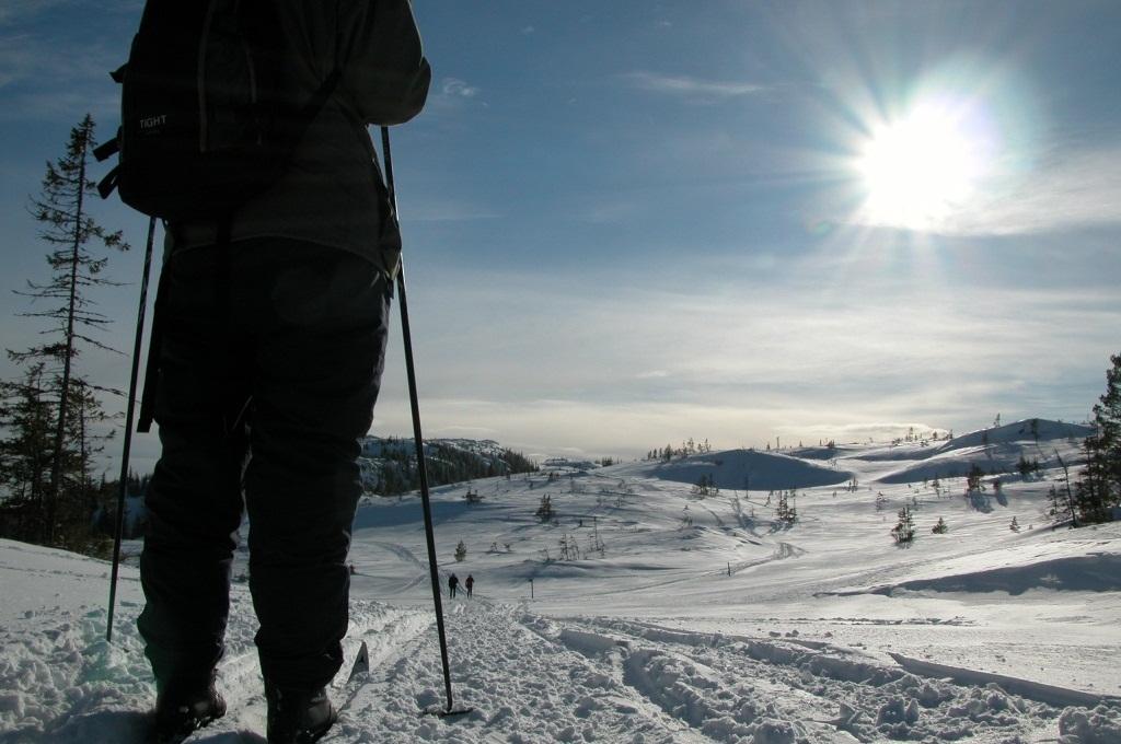 Skitur i Bymarka i Trondheim, Foto: Jonny Remmereit/tt.no