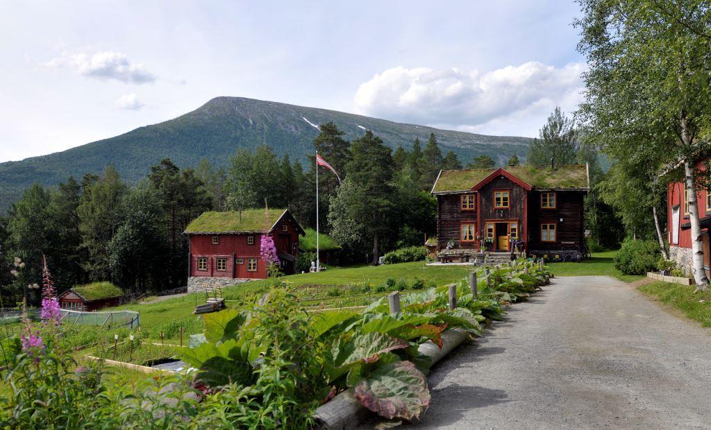 Luggumt på Oppdal, Småbruket, Foto: Morgan Frelsøy