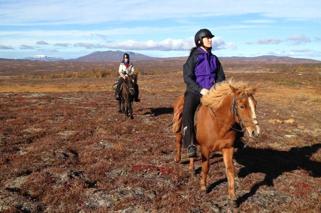 Hesteridning med Dyrhaug Ridesenter i Tydal, Trøndelag, Foto: Bård Svendsen/TRL