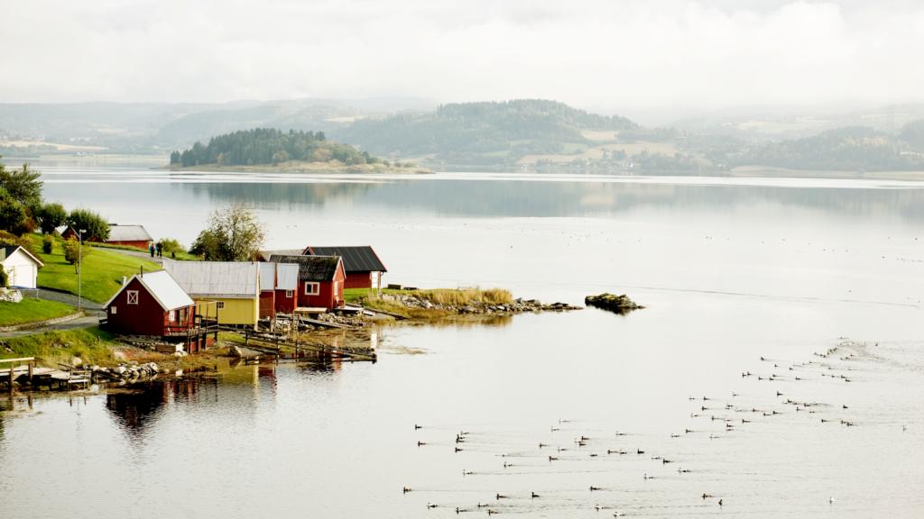 Den Gyldne Omvei på Innherred, Trøndelag. Foto: Tom Gustavsen / trondelag.com
