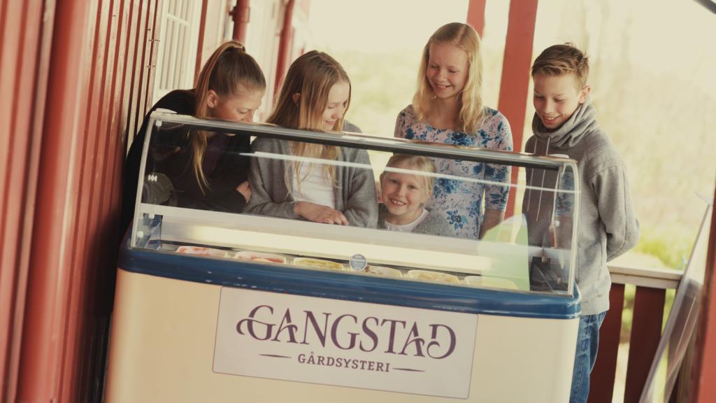Is fra Gangstad Gårdsysteri er en favoritt hos barna. Foto: Marius Rua/trondelag.com
